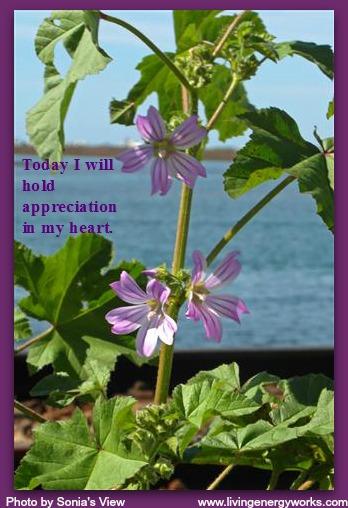 Gratitude: Unlock Magic to Improve Your Day